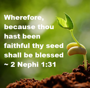 85e64-faithfulseed