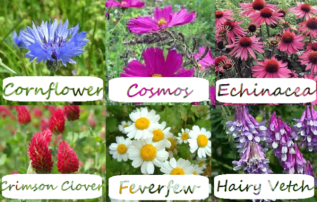 Label Flowers 3