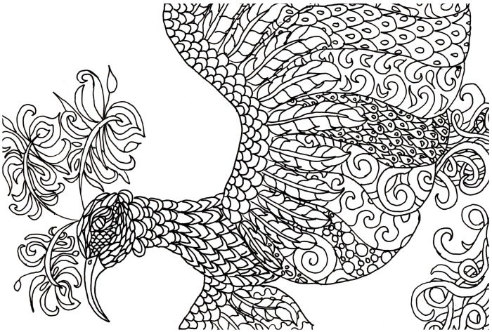 FREE! Adult Coloring Book Page – Fantasy Bird | Jeanine A Thriver