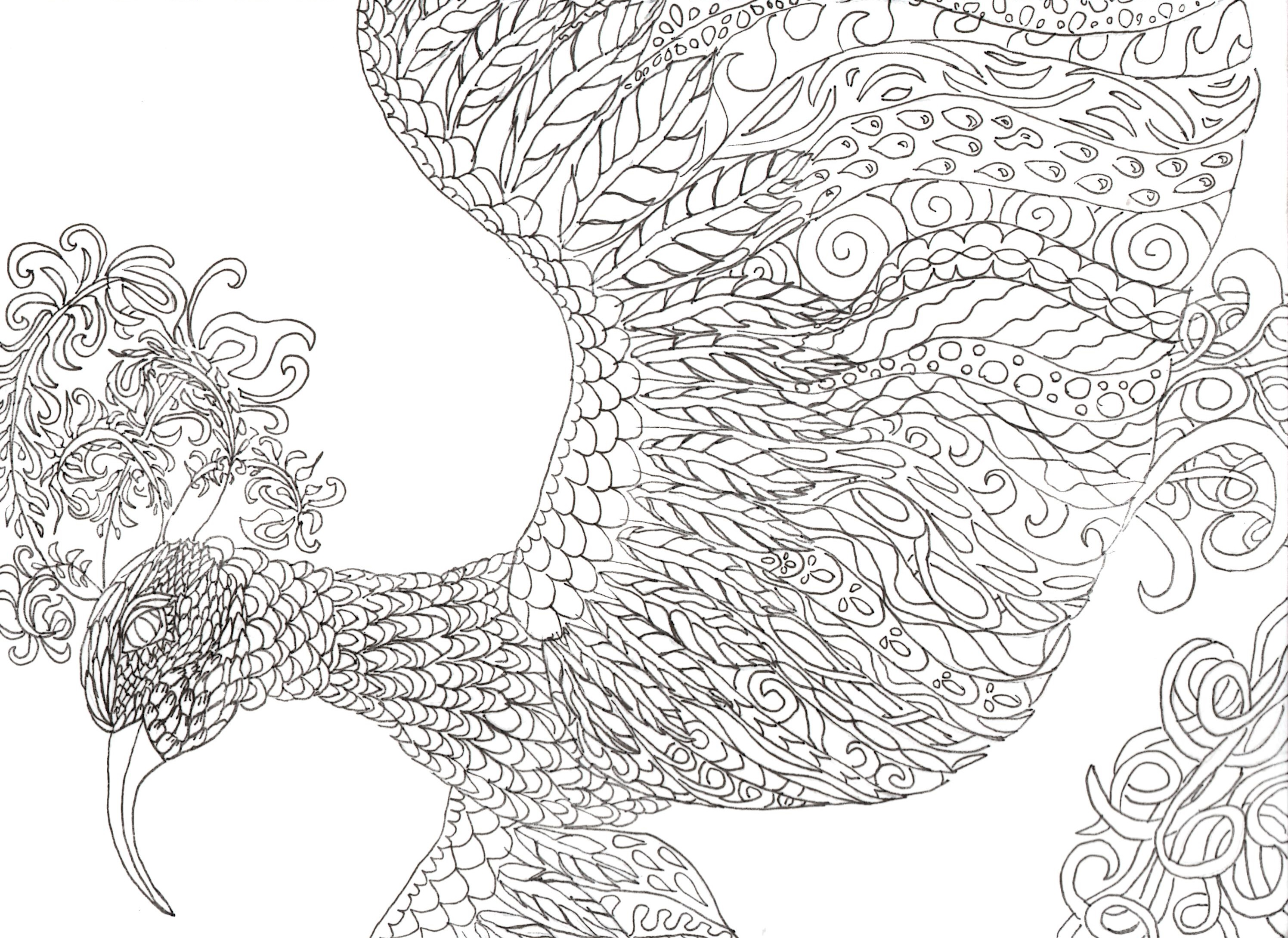 fantasy bird - Fantasy Coloring Books For Adults